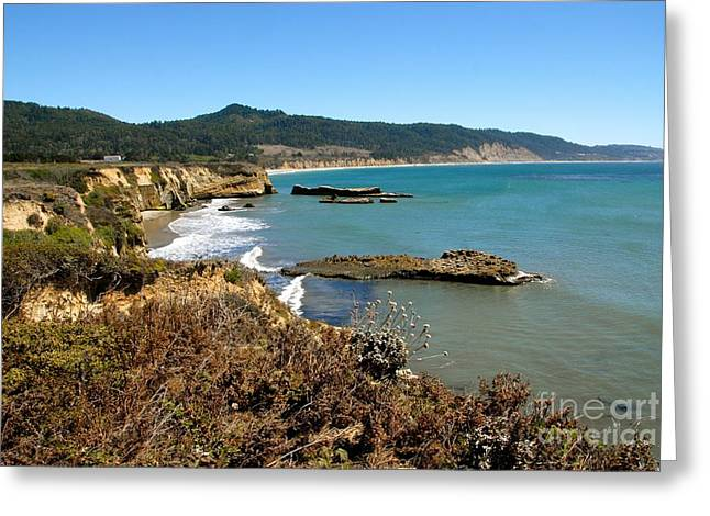 Half Moon Bay Greeting Cards - Hidden Beach Greeting Card by Lisa Schafer