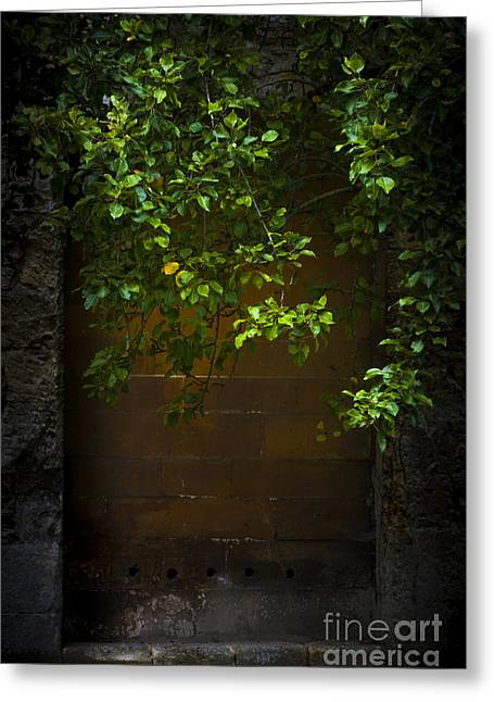 Next To Tree Greeting Cards - Hidden Door Greeting Card by Svetlana Sewell