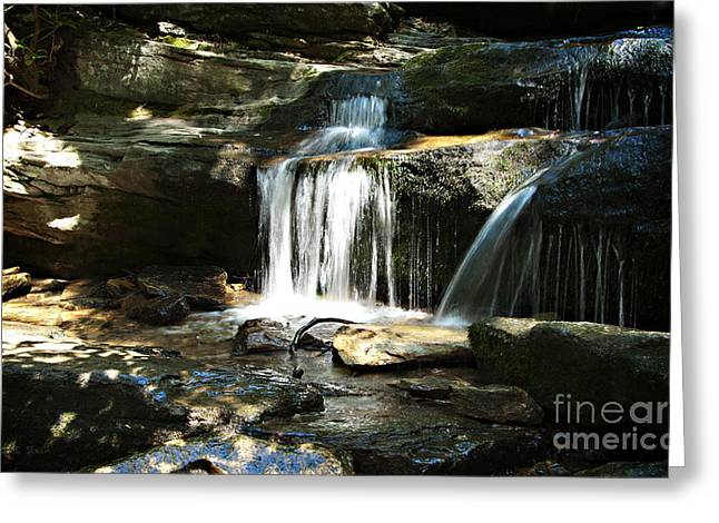 Stein Greeting Cards - Hidden Falls - Hanging Rock State Park North Carolina Greeting Card by Nancy E Stein