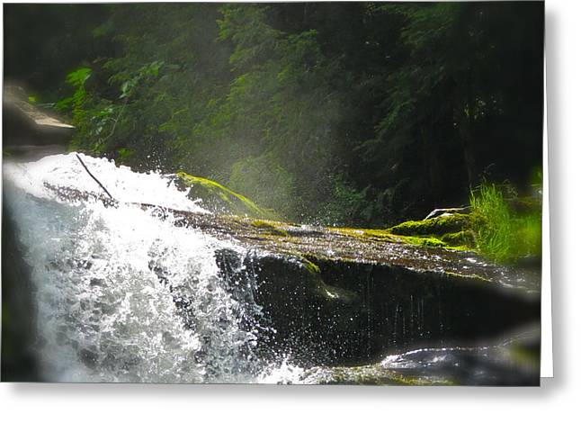 Stream Pyrography Greeting Cards - Hidden Falls Greeting Card by Paul Schoenig