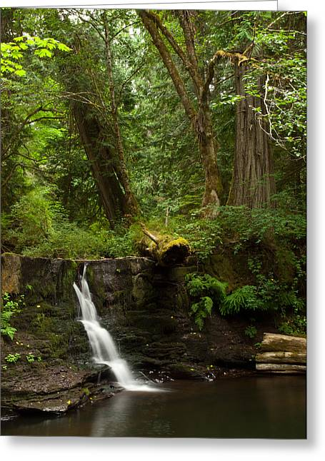 Escarpment Greeting Cards - Hidden Gem Greeting Card by Randy Hall