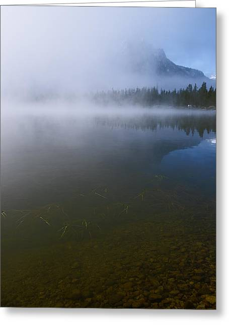 Invisible Greeting Cards - Hidden in Fog Greeting Card by Vishwanath Bhat