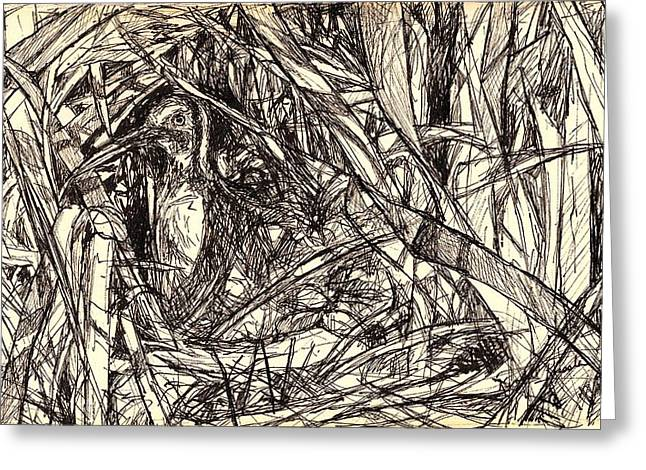 Pen And Ink Drawing Greeting Cards - Hidden Greeting Card by Kendall Kessler