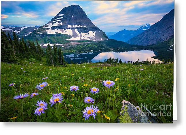 Aster Greeting Cards - Hidden Lake Greeting Card by Inge Johnsson