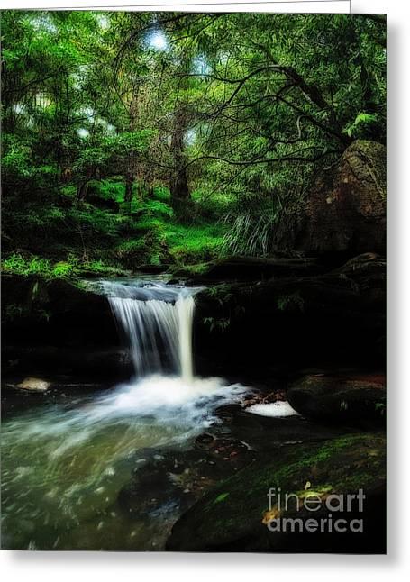 Hidden Rainforest - Painterly Greeting Card by Kaye Menner