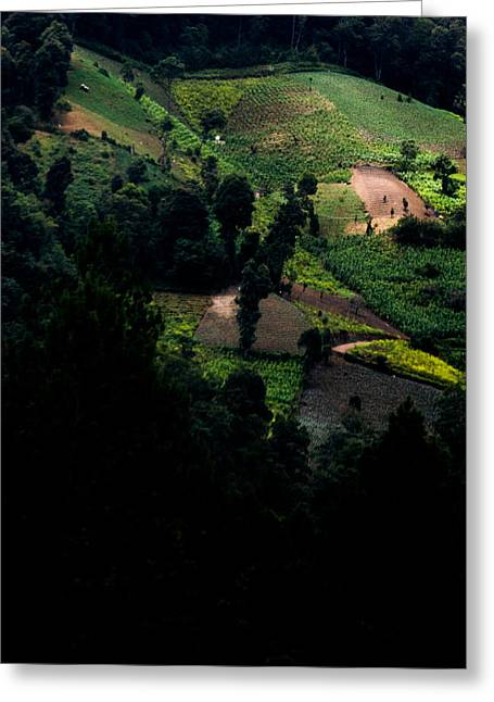 Mountainside Art Greeting Cards - Hidden Valley in Guatemala Greeting Card by Parker Cunningham