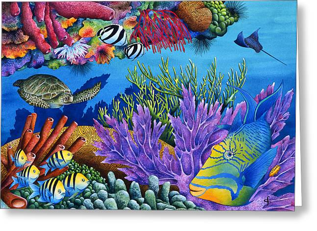 Recently Sold -  - Sea Animals Greeting Cards - Hide And Seek Greeting Card by Carolyn Steele