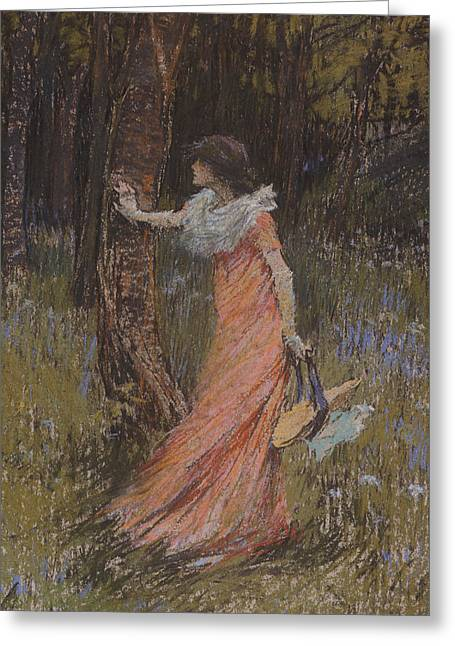 Hiding Greeting Cards - Hide and Seek Greeting Card by Elizabeth Adela Stanhope Forbes
