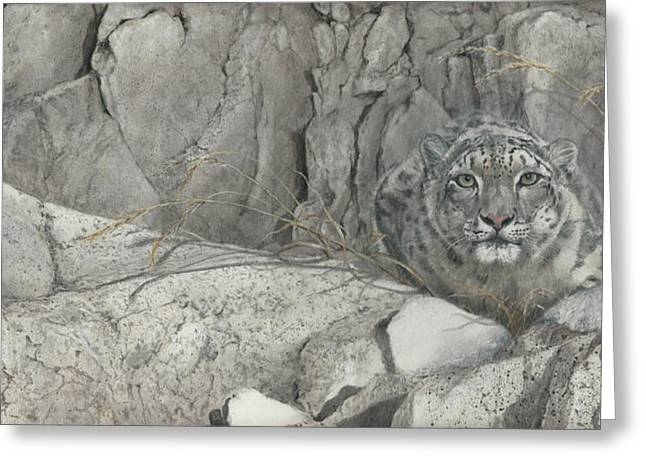 Snow Leopard Greeting Cards - Hiding in the Himalayas Greeting Card by Rob Dreyer AFC