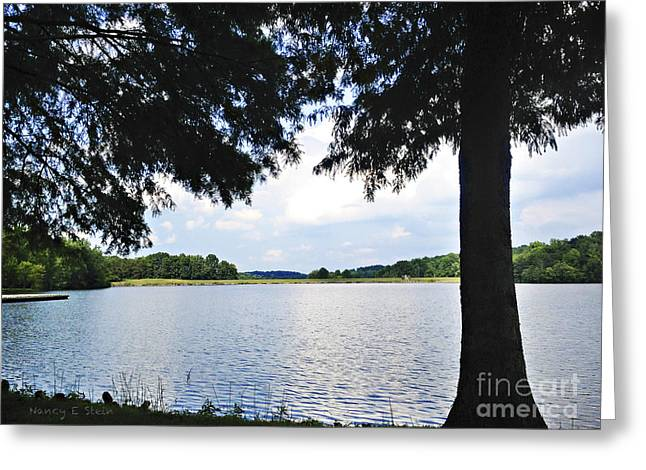 Stein Greeting Cards - Higgins Lake In The Summer Greeting Card by Nancy E Stein