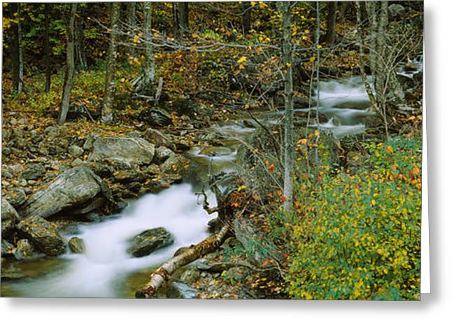 Color Change Greeting Cards - High Angle View Of A Stream Passing Greeting Card by Panoramic Images