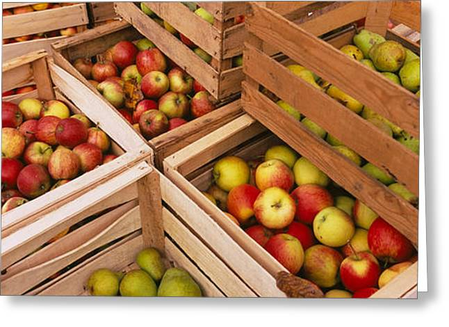 Apple Crates Greeting Cards - High Angle View Of Harvested Apples Greeting Card by Panoramic Images