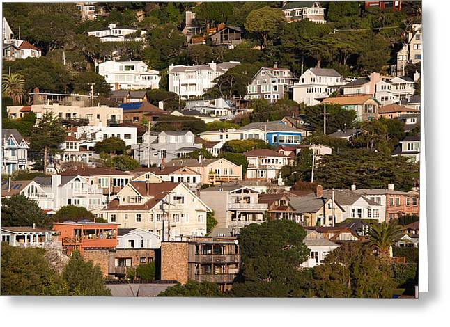 Sausalito Greeting Cards - High Angle View Of Houses In A Town Greeting Card by Panoramic Images