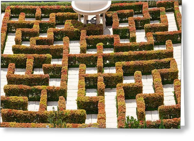 Maze Greeting Cards - High Angle View Of Maze At Ritz-carlton Greeting Card by Panoramic Images