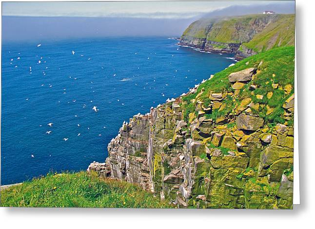 Ocean Art Photography Greeting Cards - High Cliffs in Saint Marys Ecological Reserve-NL Greeting Card by Ruth Hager
