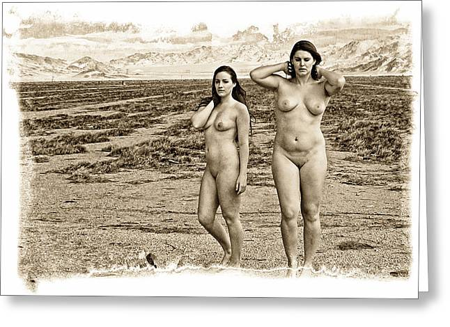 Dry Lake Digital Art Greeting Cards - High Desert Jewels Greeting Card by Ken Evans