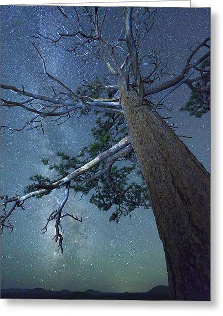 Deschutes Greeting Cards - High Desert Night 3 Greeting Card by Christian Heeb