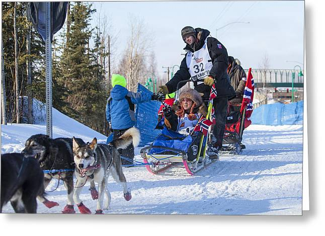 Dog Sled Racing Greeting Cards - High Five Greeting Card by Tim Grams