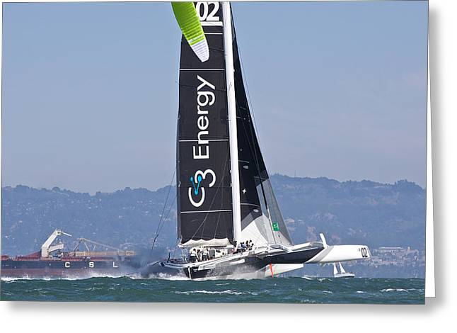 Sausalito Greeting Cards - High Flying Greeting Card by Steven Lapkin