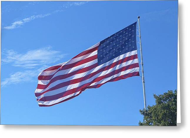 Glory Honor Greeting Cards - High Flying US Flag Greeting Card by Linda Phelps