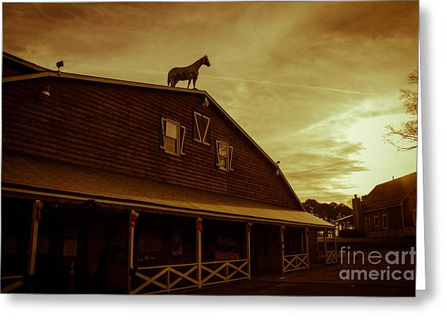 Store Fronts Greeting Cards - High Horse Greeting Card by Tom Gari Gallery-Three-Photography