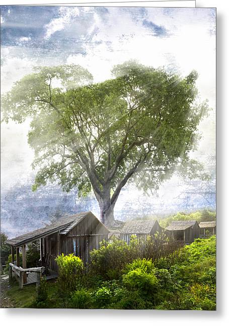 Mountaintop. Trees Greeting Cards - High in the Clouds Greeting Card by Debra and Dave Vanderlaan
