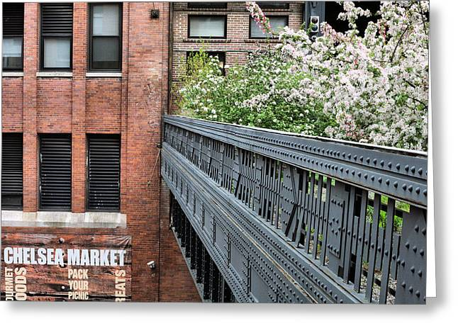Chelsea Greeting Cards - High Line Park Greeting Card by JC Findley