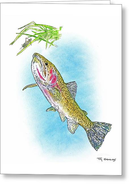Flyfishing Pastels Greeting Cards - High Mountain Cutt Greeting Card by Tim Shoales