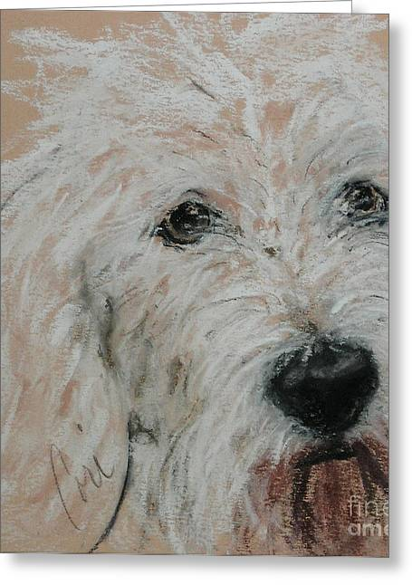 Puppies Pastels Greeting Cards - High Spirits Greeting Card by Cori Solomon