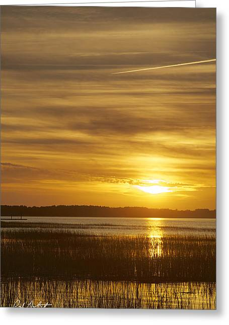 Tidal Photographs Greeting Cards - High Tide in the Marsh Greeting Card by Phill  Doherty