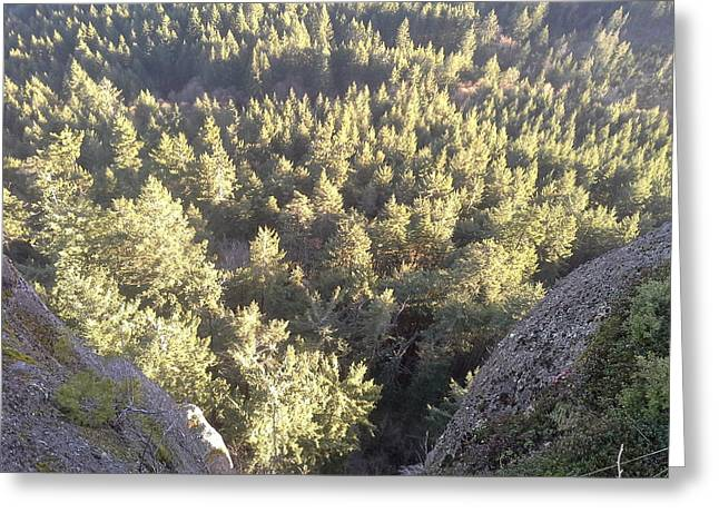 Canvas Greeting Cards - Higher Valley Duncan Bc Mt Pravo Greeting Card by Shane Dufoe