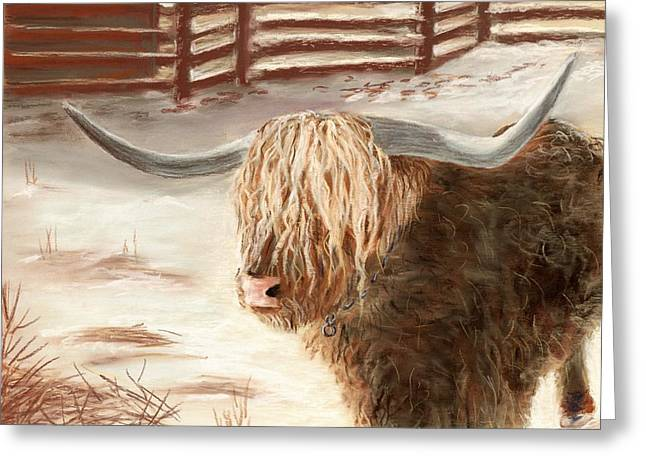 Fence Pastels Greeting Cards - Highland Bull Greeting Card by Anastasiya Malakhova