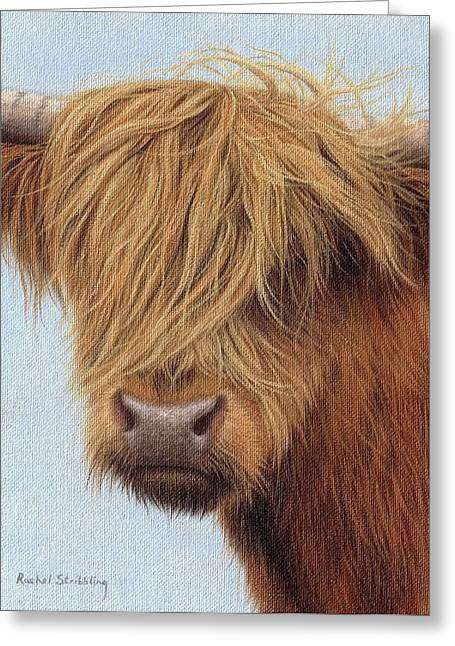 Highlands Greeting Cards - Highland Cow Painting Greeting Card by Rachel Stribbling