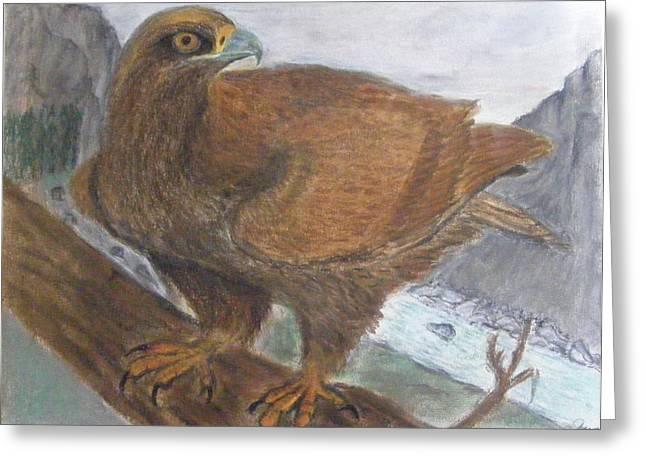 Problem Pastels Greeting Cards - Highland Eagle Greeting Card by Thomas McCaskie