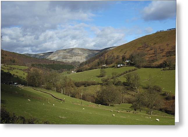Grazing Animals Greeting Cards - Highlands - Scotland Greeting Card by Mike McGlothlen