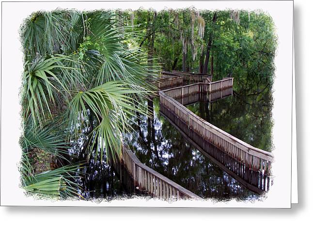 Tress Greeting Cards Greeting Cards - HighWater Reflection Greeting Card by Sheri McLeroy