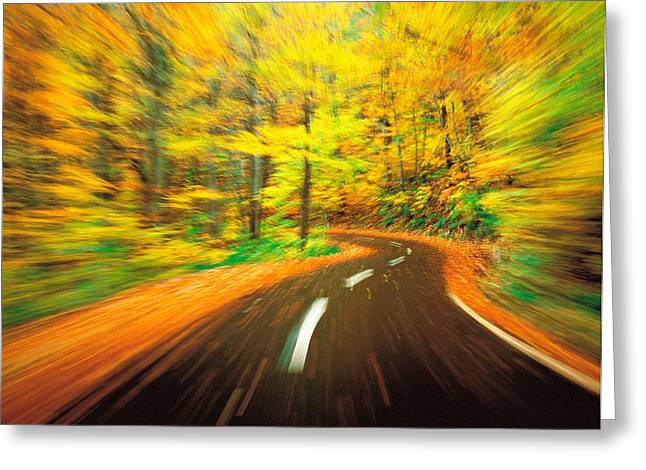 Peaceful Scene Photographs Greeting Cards - Highway Amidst Forest Greeting Card by Panoramic Images