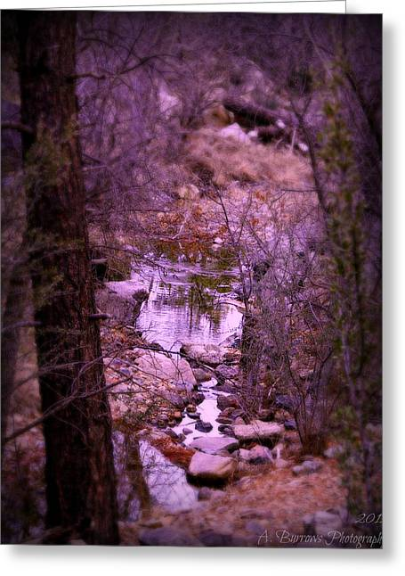 Prescott Greeting Cards - Hike Above the Stream Greeting Card by Aaron Burrows