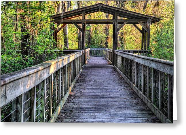 Florida Panhandle Greeting Cards - Hike Alabama State Parks Greeting Card by JC Findley