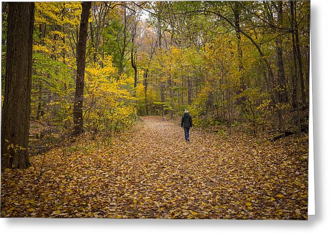 Munroe Falls Greeting Cards - Hiker III  Greeting Card by Tim  Fitzwater