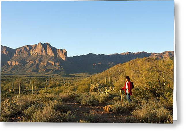 Casual Clothing Greeting Cards - Hiker Standing On A Hill, Phoenix Greeting Card by Panoramic Images