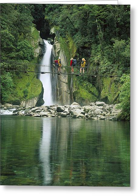 Eco-tourism Greeting Cards - Hikers On Bridge Giants Gates Falls Greeting Card by Colin Monteath