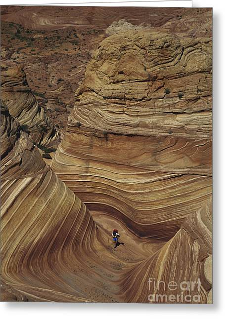 Lithified Greeting Cards - Hiking In Arizona Greeting Card by Mark Newman
