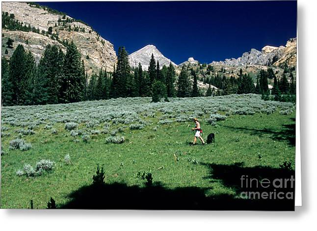 Idaho Scenery Greeting Cards - Hiking The Pioneer Mountains Greeting Card by William H. Mullins