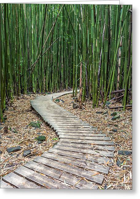 Hawaiian Paradise Park Greeting Cards - Hiking through the Bamboo forest Greeting Card by Pierre Leclerc Photography