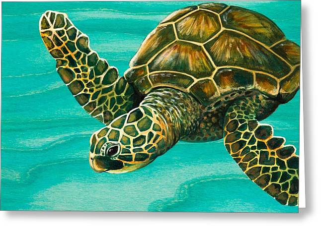 Recently Sold -  - Snorkel Greeting Cards - Hilahila Shy Sea Turtle Greeting Card by Emily Brantley