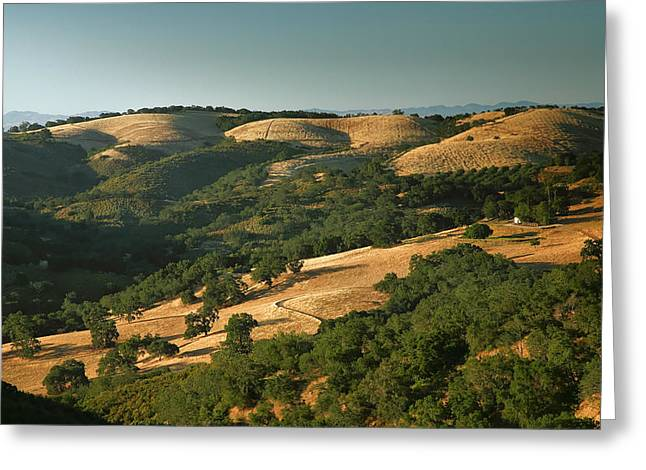 Pacific Ocean Prints Greeting Cards - Hills Of California Greeting Card by Steven Ainsworth