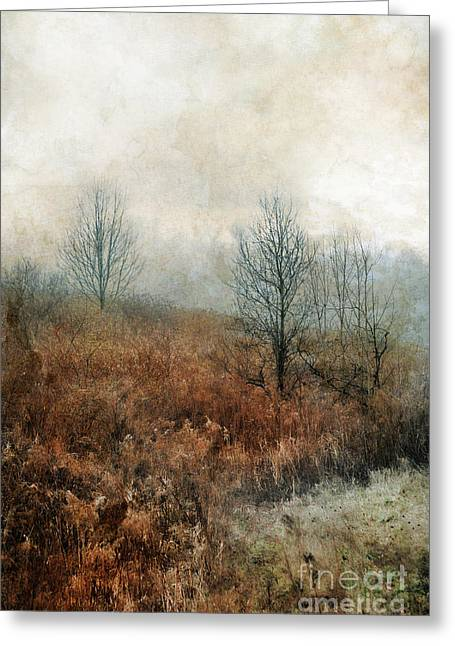 Muted Greeting Cards - Hillside Greeting Card by HD Connelly