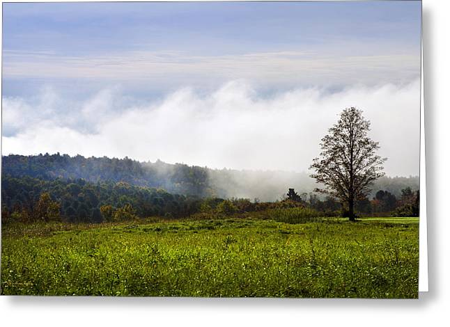 Foggy Day Greeting Cards - Hilltop Fog Sunrise Landscape Greeting Card by Christina Rollo