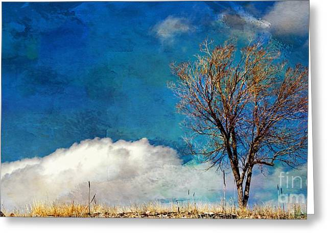 Hilltop Tree Greeting Card by Barbara Chichester